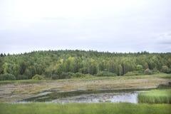 Im Sommer im Juli stellt die Sonne langsam in die typische Landschaft ein Diese Landschaft befindet sich nahe der Kleinstadt von Stockfotos