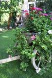 Im Sommergarten Stockbild