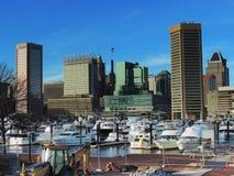 Im Stadtzentrum gelegene Baltimore-Skyline vom Bundeshügel Lizenzfreie Stockfotografie