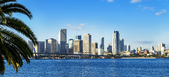 Im Stadtzentrum gelegene Skyline Miamis Lizenzfreie Stockfotografie