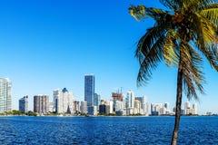 Im Stadtzentrum gelegene Skyline Miamis Stockfoto