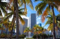 Im Stadtzentrum gelegene Skylineansicht Miamis von Bayfront-Park Lizenzfreies Stockbild