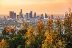 Im Stadtzentrum gelegenes Los Angeles #41 Lizenzfreies Stockbild