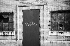 Im Stadtzentrum gelegenes New Orleans, LA Lizenzfreie Stockfotografie
