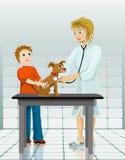 Im Tierarzt lizenzfreie stockfotos
