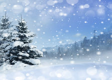 Im untereren Teil der snow-covered Hügel mit Schattenbildern der gezierten Bäume Stockfoto