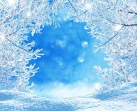 Im untereren Teil der snow-covered Hügel mit Schattenbildern der gezierten Bäume Stockfotografie