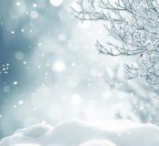 Im untereren Teil der snow-covered Hügel mit Schattenbildern der gezierten Bäume Lizenzfreie Stockfotos
