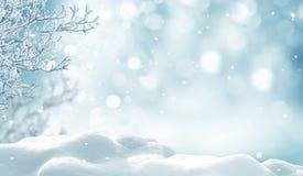 Im untereren Teil der snow-covered Hügel mit Schattenbildern der gezierten Bäume stockfotos