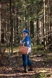 Im Wald Stockfotografie