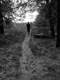 Im Wald durch mich Lizenzfreie Stockfotos