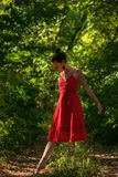 Im Wald tanzen Stockbild