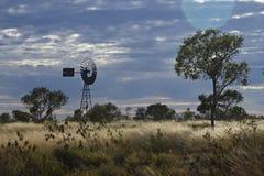 Im Wind Lizenzfreies Stockfoto