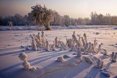 Im Winter auf dem Spielplatz stockfotos
