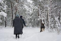Im Winter folgte der schneebedeckte Wald entlang dem Weg vom PET Stockbild