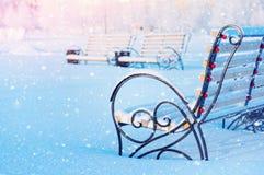 Im Winterpark Lizenzfreie Stockfotos