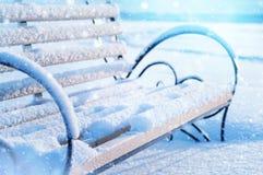 Im Winterpark Lizenzfreies Stockfoto