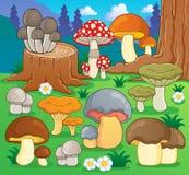 Image 4 de thème de champignon de couche Images stock
