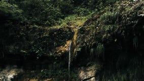 Image aérienne cinématographique de bourdon de cascade et d'une petite piscine profondément dans la jungle de forêt tropicale au  image stock
