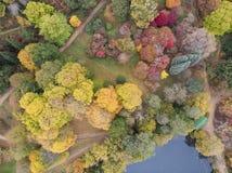 Image aérienne de paysage de bourdon de stupéfaction de paysage vibrant coloré renversant de campagne d'Autumn Fall English photo libre de droits