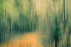 Image abstraite d'une forêt en automne Images libres de droits
