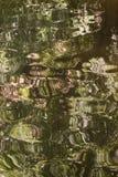 Image abstraite d'une surface criquée IV de l'eau Image libre de droits