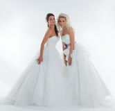 Image of alluring stylish brides posing in studio Royalty Free Stock Images