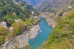 Image of Arashiyama Of Spring. An Image of Arashiyama Of Spring Stock Photography