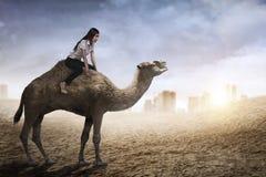 Image of asian business woman riding camel Stock Photos