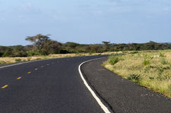 Asphalt road in the African savannah Royalty Free Stock Photo