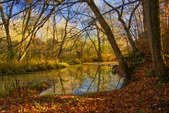 Autumn Colours along a Southern Ontario River. Image of autumn deciduous colours along Trout Creek in southern Ontario, Canada royalty free stock images