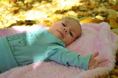 Newborn baby boy in autumn photoshoot Stock Photos