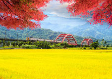 Image of beatiful landscape, Taiwan Royalty Free Stock Image