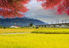 Image of beatiful landscape, Taiwan Royalty Free Stock Images
