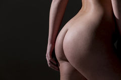 Beautiful Body Of A Female Model Stock Images