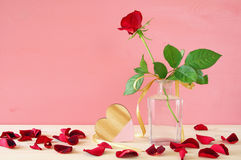 Image of beautiful one red rose in the vase Stock Images