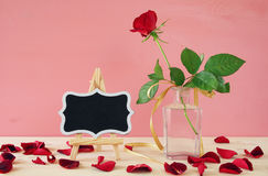 Image of beautiful one red rose in the vase Stock Image