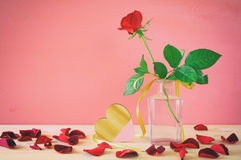 Image of beautiful one red rose in the vase Stock Photo