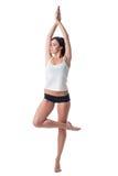 Image of beautiful slim woman exercising pilates Royalty Free Stock Photo