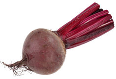 Image of beet on white background. Royalty Free Stock Photos