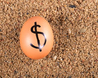 Image of big white egg with dollar sign on a sand Stock Image