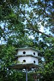 Bird house and trees. An image of bird house royalty free stock images