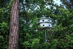 Bird house and trees. An image of bird house stock images