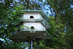 Bird house and trees. An image of bird house stock photo