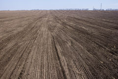 An image of black ploughed field under blue sky. Black ploughed field under blue sky Stock Photos
