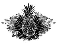 Image of black and white pineapple fruit lettering exotic on background. Vector illustration, design element for. Congratulation cards, t-shirt, print, banners Royalty Free Stock Photos