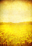 Image of blooming field over vintage paper Stock Photos