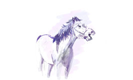 Image of a blue horse, a water color Stock Photos