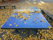 Image of blue table tennis table with yellow leaf stock photography