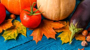 Image of blue wooden table with autumn leaves, pumpkin Royalty Free Stock Image
